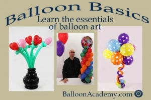 Classes on balloon decor and twisting balloon academy for Balloon decoration courses dvd