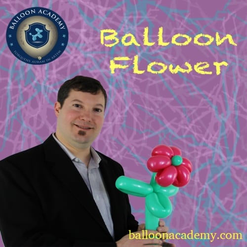 Balloon Flower by Todd Neufeld