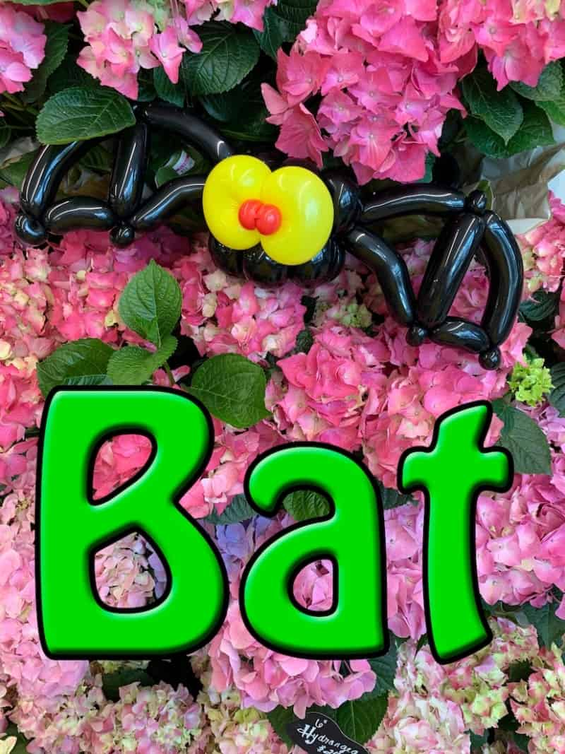 Balloon Bat - Petal Pals