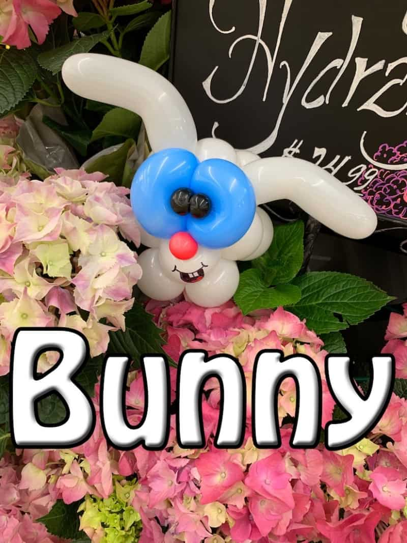 Balloon Bunny - Petal Pals