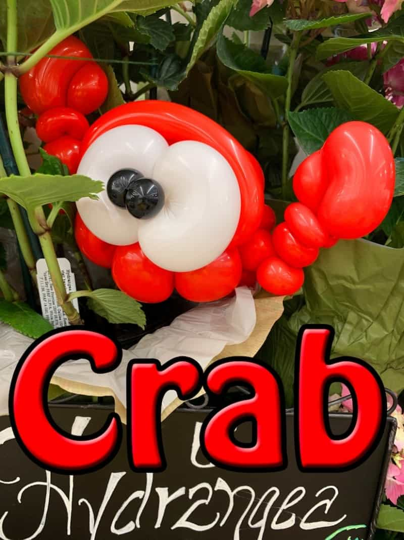 Balloon Crab - Petal Pals