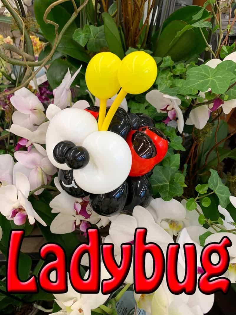 Balloon Ladybug - Petal Pals