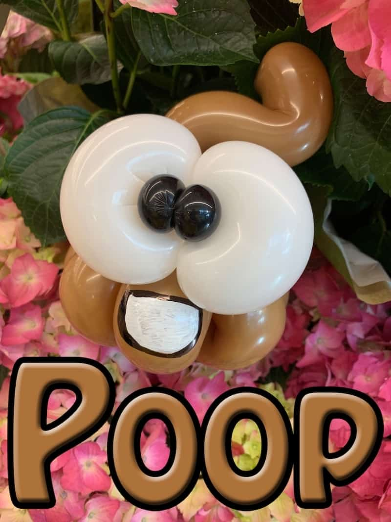 Balloon Poop Emoji - Petal Pals
